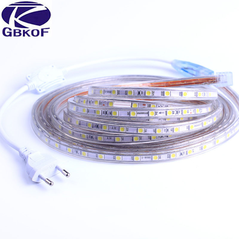 5050 Flexible LED Strip light AC220V 60leds m Waterproof IP67 Led Tape LED Light With EU Power Plug 1M 2M 3M 8M 9M 10M 20M in LED Strips from Lights Lighting