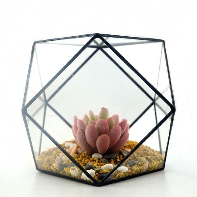 Террариум стеклянной вазе teraryum terrario стеклянный террариум terrariu стекло завод террариум стеклянный Террариум Вазы для украшения