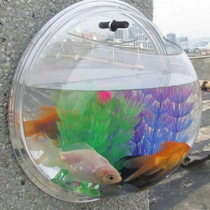 for Aquarium decoration sealant