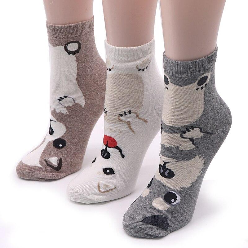 Пасхой, картинка прикольные носки
