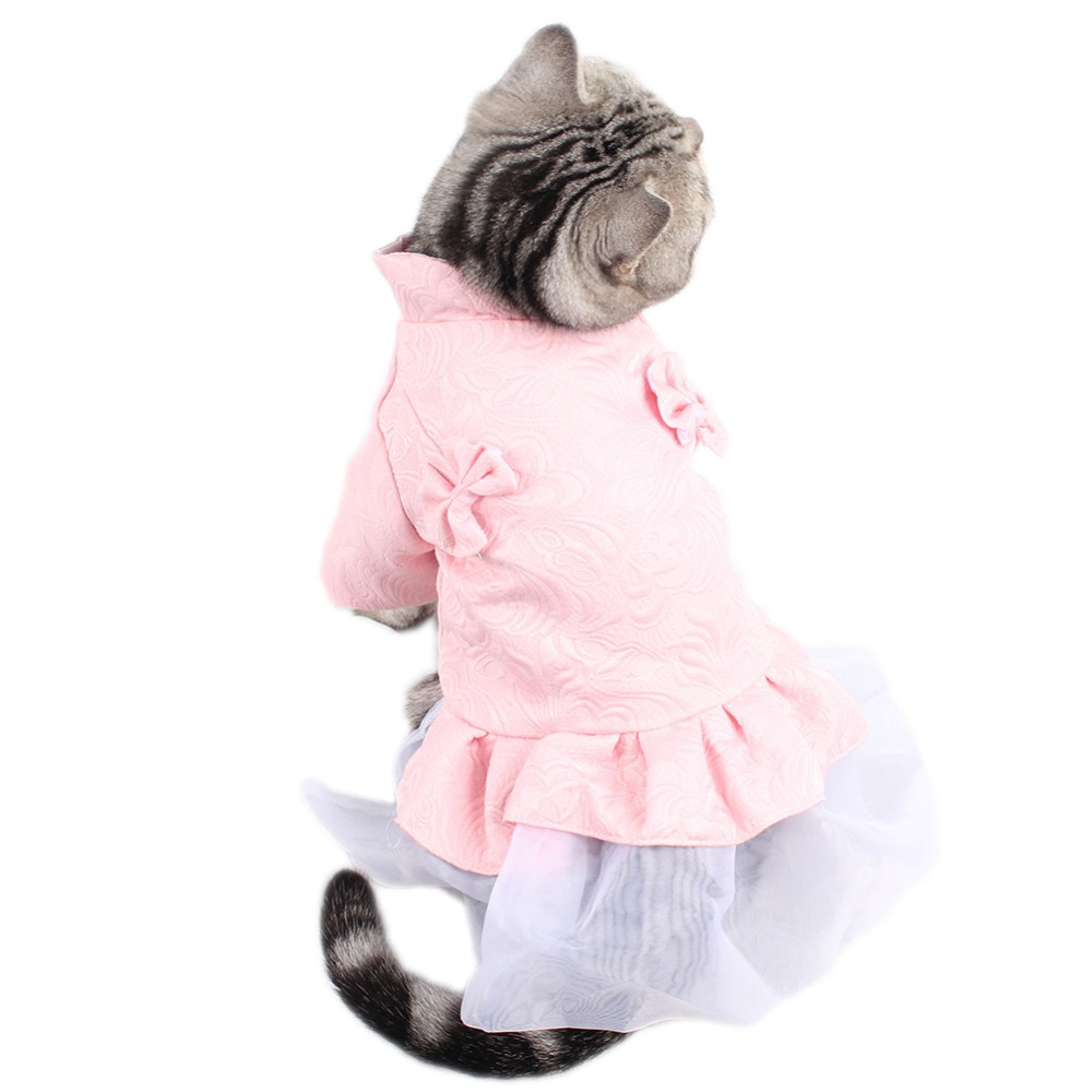 Clothing, Bubble, S-XXL, Cats, Cute, Gato