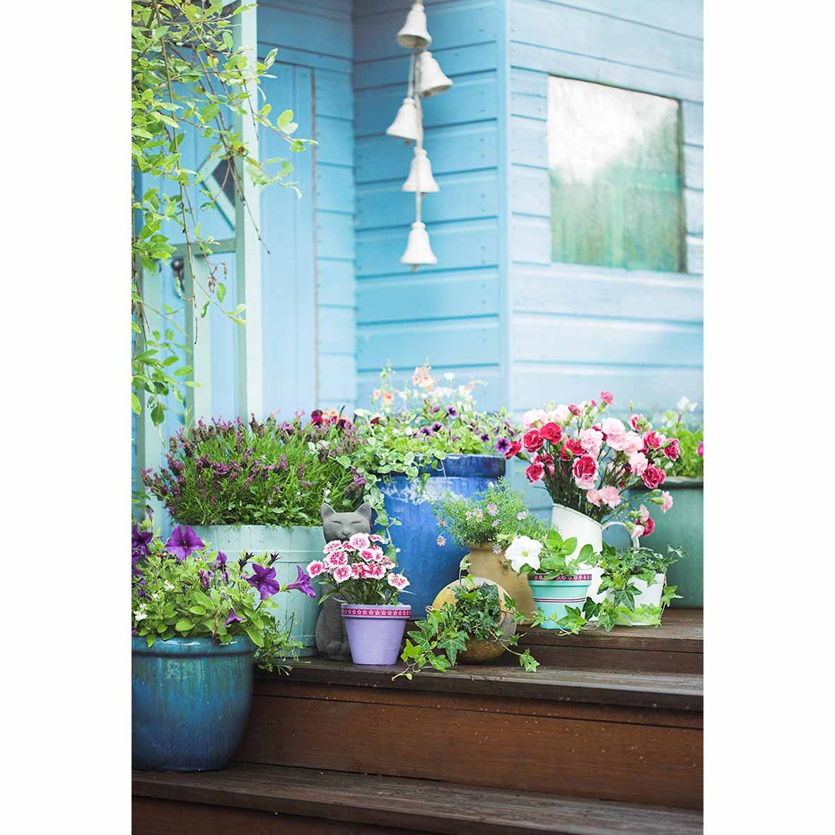 Funnytree Spring Summer Potted Flowers Garden Shed Background Nature