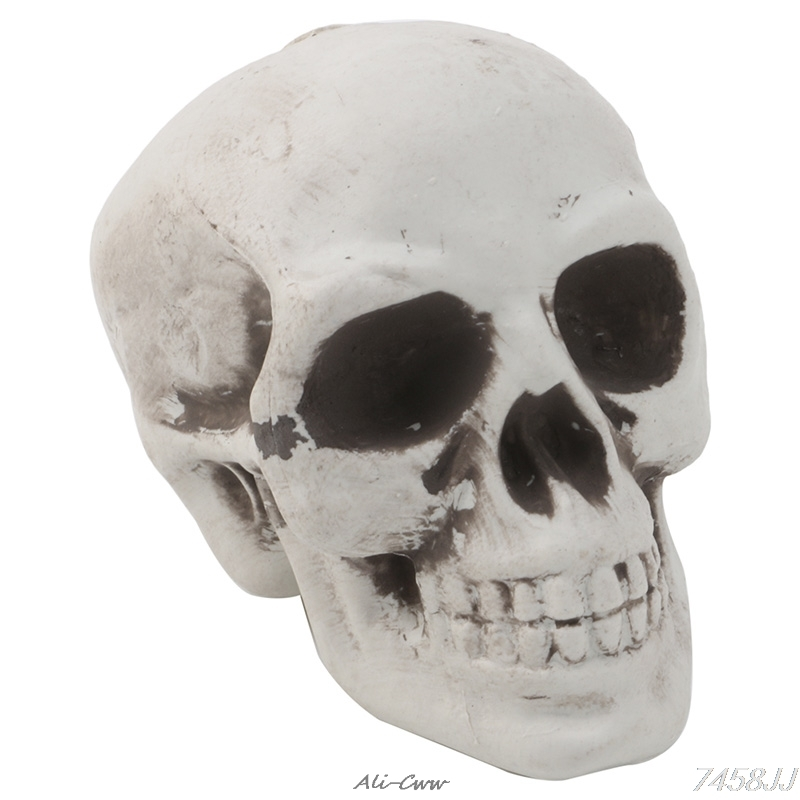 Skull Decor Prop Skeleton Head Plastic Halloween Day Coffee Bars Ornament DropShip