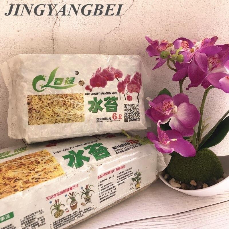 Натуральный сушеный сфагаум мох, Садовые принадлежности, увлажняющее питание, органическое удобрений для украшения орхидеи-бабочки