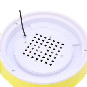 Image 5 - Mini 7 jaj automatyczne inkubatory jaj elektroniczny cyfrowy inkubator toczenie regulacja temperatury dla kurcząt kaczki gęsi przepiórki