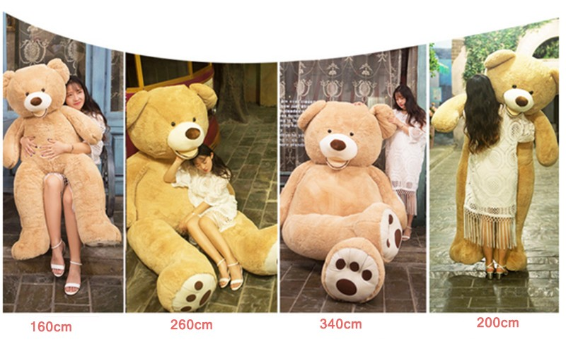 COSTCO Bear19