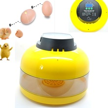 10-Egg Mini Egg Incubator Egg Candler Poultry Chicken Goose Quail Duck Egg Incubator Chicken top selling automatic egg incubator mini 48 egg incubator for sale