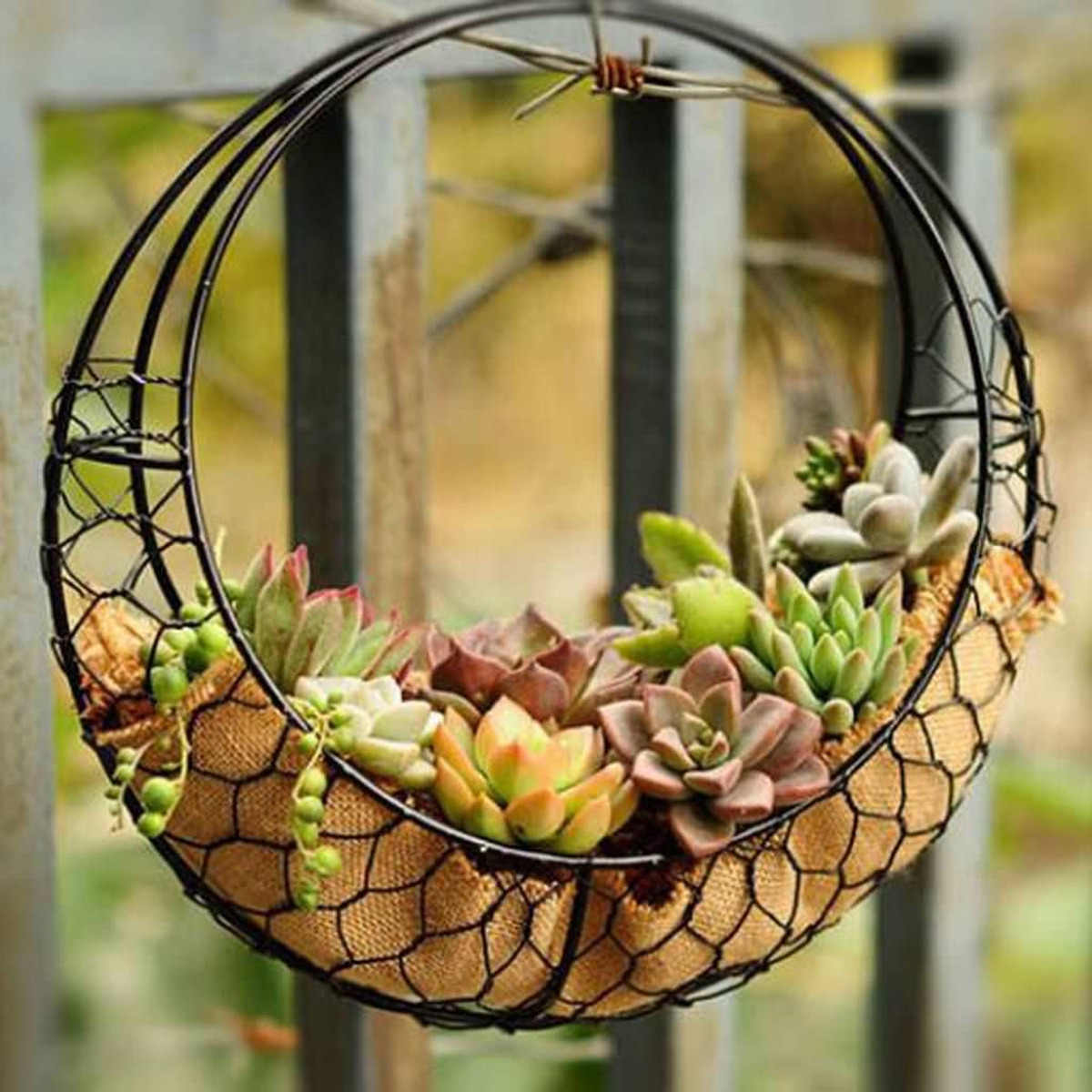 28cm Moon Shape Iron Wire Wreath Frame Metal Succulent Pot Hanging Basket Plant Flower Holder Wedding/ Home/Cafe/Party Decor