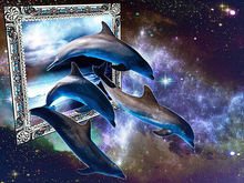 Full Round Drill 5D DIY Diamond Painting Animal dolphin 3D Embroidery Cross Stitch Home Decor