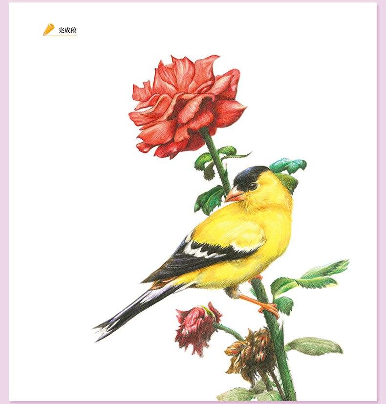desenho tutorial livro de arte realmente pintados