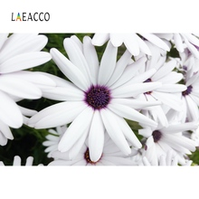 Laeacco White Blossom Flower Wall Paper Pattern Baby Children Photographic Backgrounds Photography Backdrops For Photo Studio