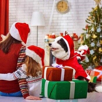 Funny Santa Dog Costumes  3