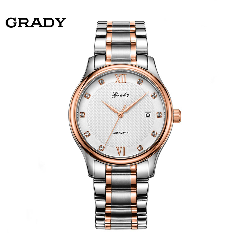 Grady Automatic Mechanical Watches Men Luxury Brand Full Steel Skeleton Men Hours Calendar Waterproof Wrist Watch
