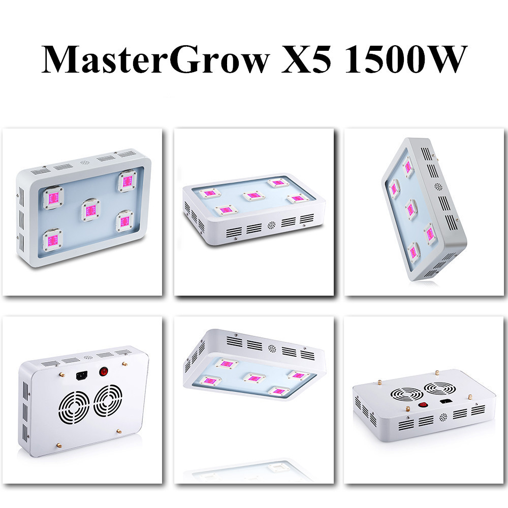 X5 (2)