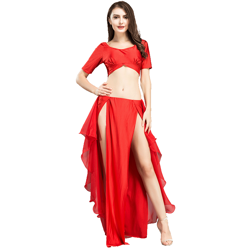 6 Colors Belly Dance Costume For Women Short Sleeve Gypsy Dancing Outfits Bollywood Bellydance Skirt Practice Dancewear DC1263
