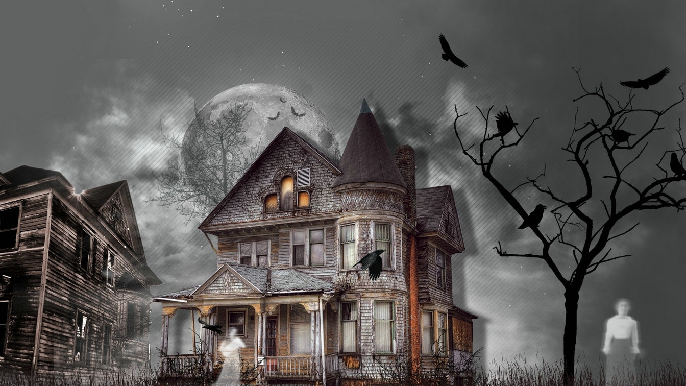 Haunted House Dark Ghost full moon tree background High quality Computer print party backdrops