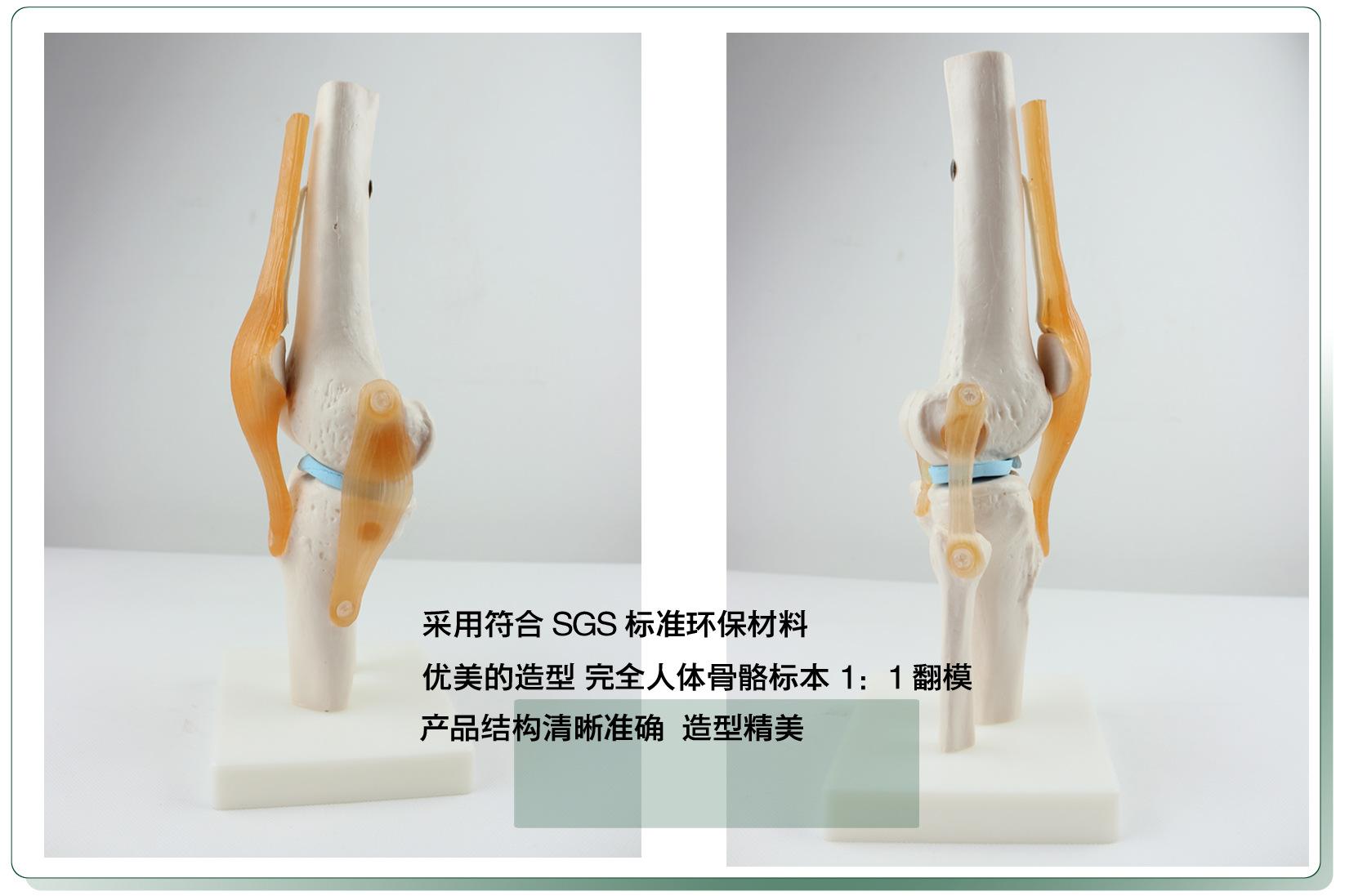 Orthopedics Week's Jersey JEP 4