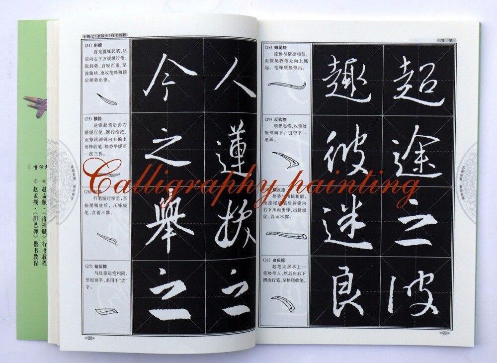 Livro de Bambu Tinta Pintura Chinesa Sumi-e Camarão,