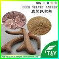 Velvet Antler 10:1 Em Pó Natural para Reforçar o Sistema Imunológico 900 g/lote