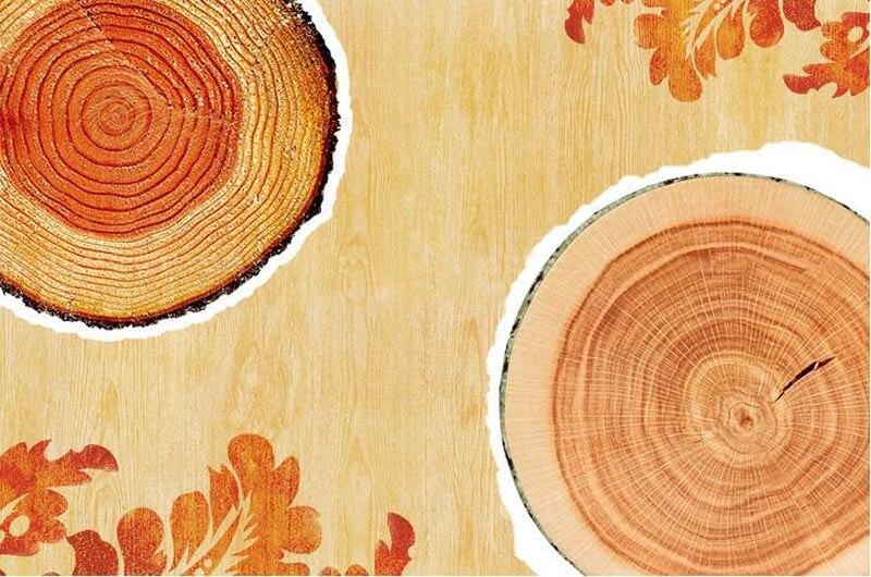 HTB1vG5cKr2pK1RjSZFsq6yNlXXaH Simulation Log Texture Cushion Big Willow Tree Pier Simulation Removable Washable Cushion Creative Sofa Pillow Home Decorative
