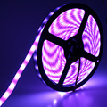DC12V 5050 IP65 Waterproof with silicon Glue LED strip blue/green/pink/purple/Orange flexible led tape lamp 5M/roll 300 Leds