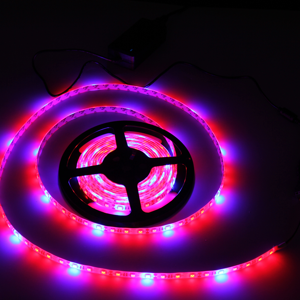 10set led grow light plants lamp led strip light lamps with led driver 4red 1blue dc12v 5m set. Black Bedroom Furniture Sets. Home Design Ideas