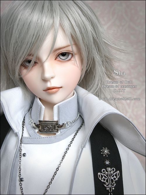 Free Shipping dod sha sd / bjd doll soom doll fl doll(include makeup and eyes) makeup makeup for