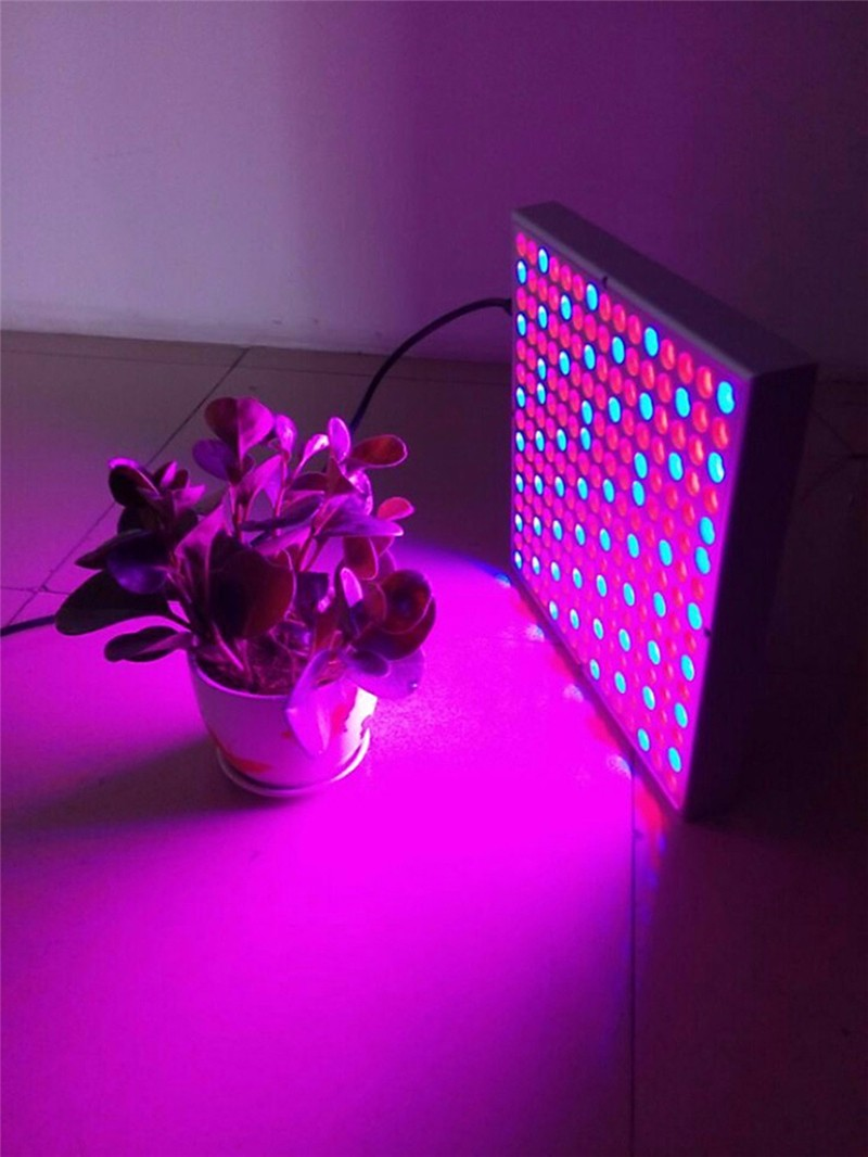 Red Blue LED Grow Light04