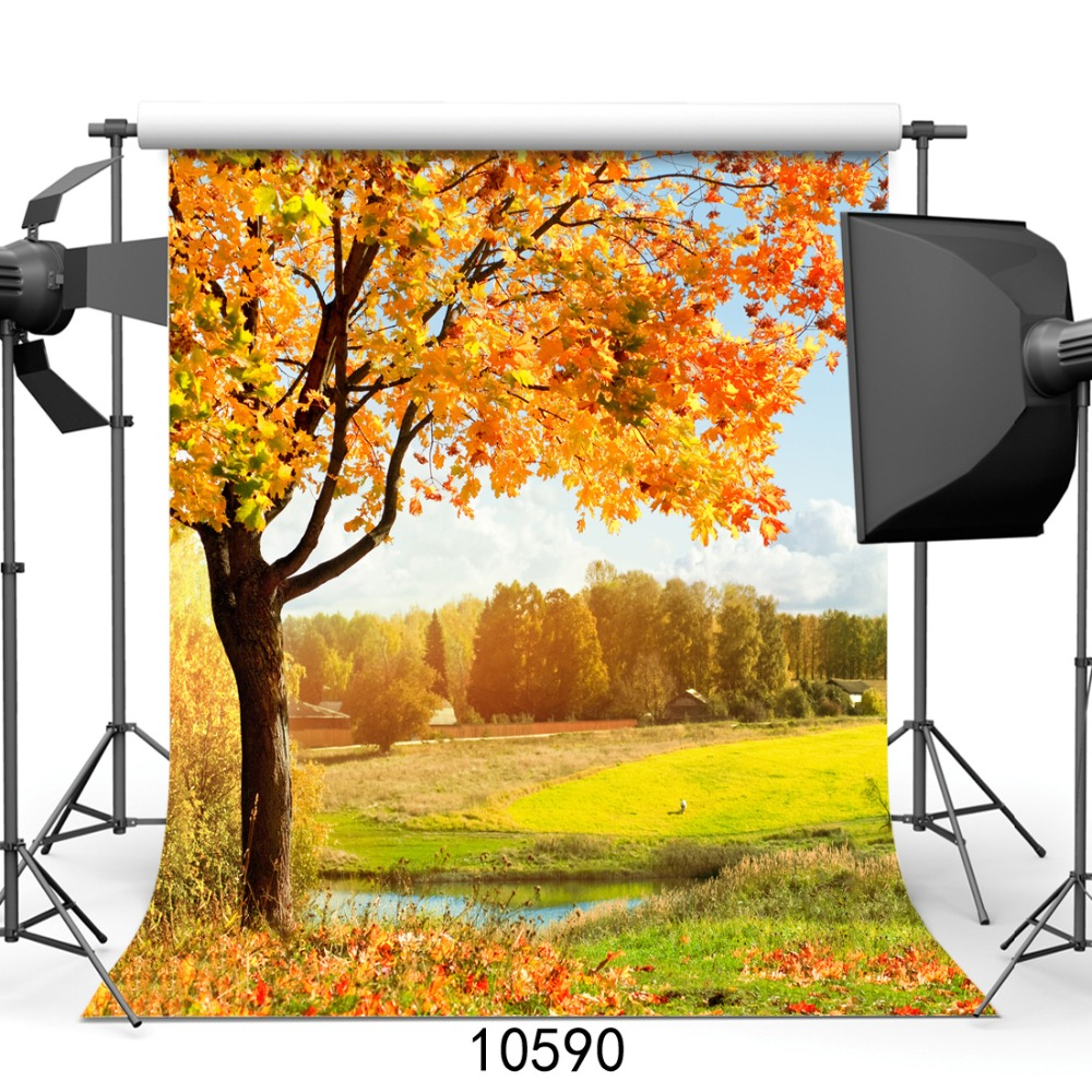 village autumn photo backgrounds wedding and children natural photography backdrop 8X8ft customize for photo studio thin vinyl цена
