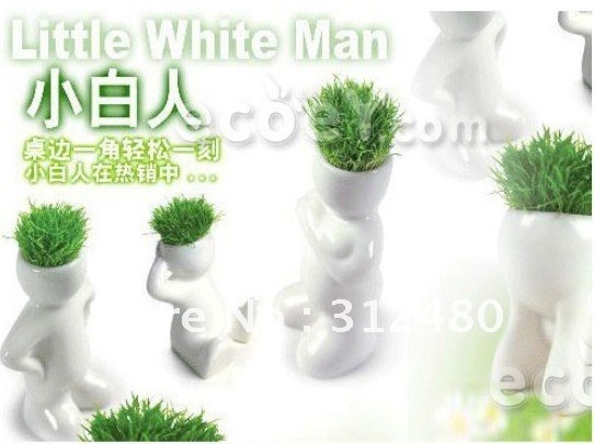 wholesale 10pc/lot Creative Gift Plant Hair man Plant Bonsai Grass Head Doll Office Mini Plant Fantastic Home Decor pot+seed