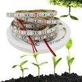 5 m smd 5050 led planta crescer luz dc12v vermelho azul 3:1 para estufa hidropônica da planta crescer led faixa livre grátis