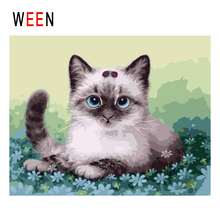 WEEN Cute Cat Diy Painting By Numbers Animal Oil On Canvas Grassland Cuadros Decoracion Acrylic Wall Art Home Decor New