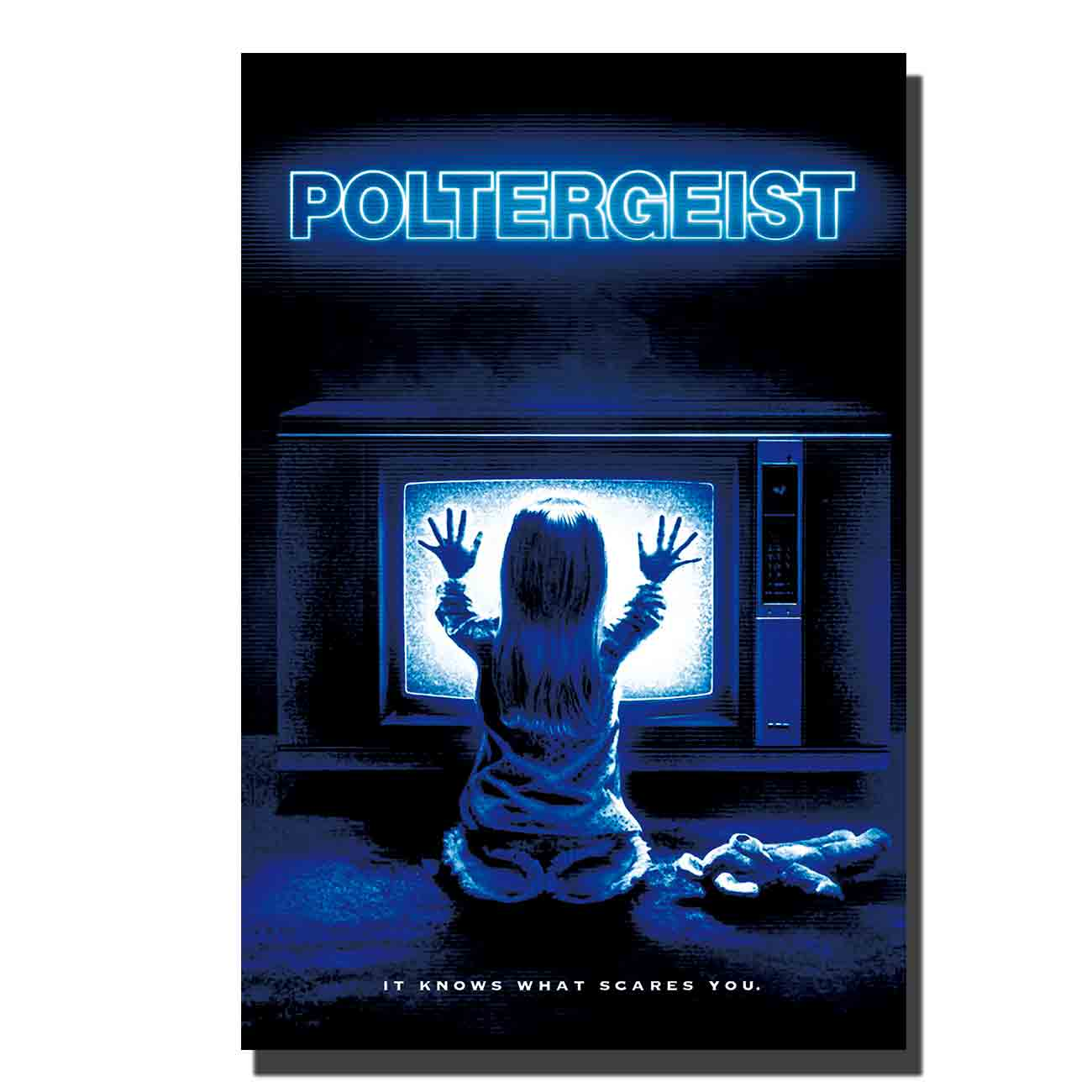 POLTERGEIST Movie Horror Paranormal Activity Speilberg Hooper Ghosts Art Poster custom Home 12x18 24x36canvas image