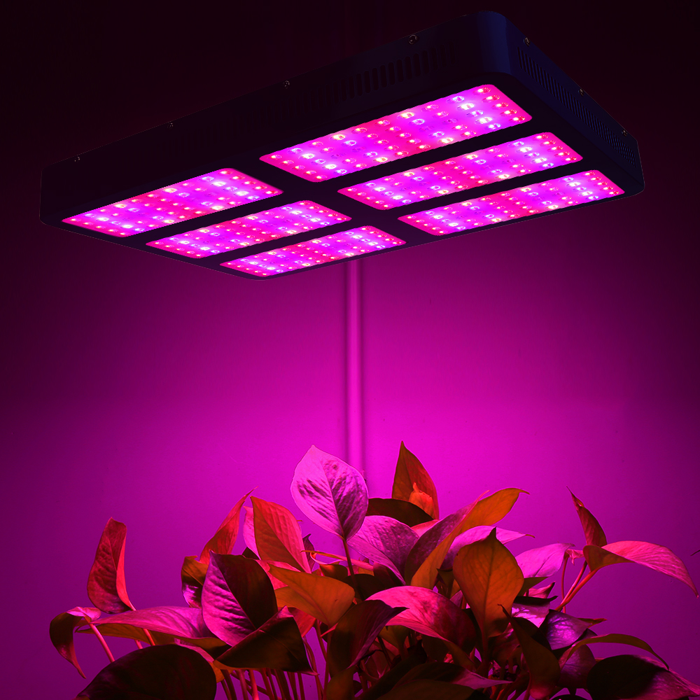 3000W 2000W 1000W Full Spectrum LED Grow Light Phyto Lamp For Plants Indoor Vegs Hydroponics Growth Bloom Greenhouse Grow Tent in LED Grow Lights from Lights Lighting