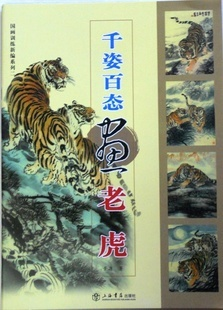 Chinese painting book The tiger painting freehand drawing steps in different poses and with different expressions copy range tiger in the smoke