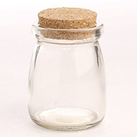 Micro Landscape Moss Bottle With Heat Resistant Glass Tea Pot Cork Sealed Tank
