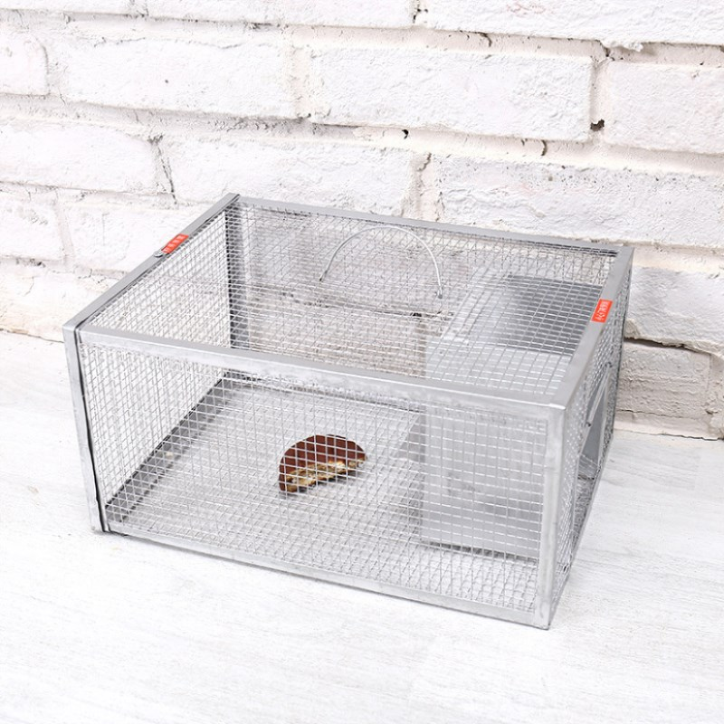 6 x Mouse rat Hunting Traps Strong Catch Snap Square Trap Trapping