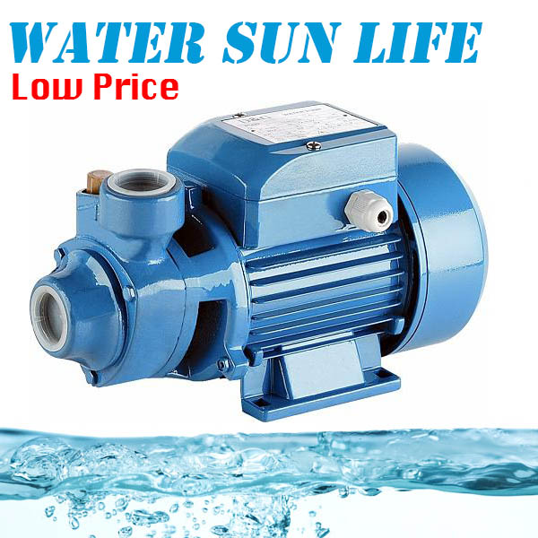 Cast Iron Self Priming Centrifugal Water Pump 370W 220V High Pressure Booster Pump 0 75kw self priming water pump for high rise wells in the river lake 220v household jet garden pump 4 5m3 h big capacity