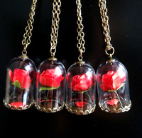 Wholesale 50 100pcs Lady Retro Glass Vial Necklaces Pendants Beauty And The Beast Natural Rose Red