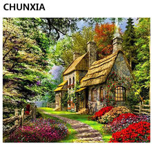 CHUNXIA Painting By Numbers DIY Framed Oil Paint Pictures Wall Art Home Decor Unique Gift A010(China)