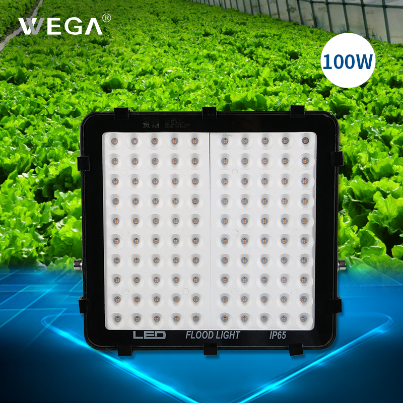 WEGA LED Plant Growth Lamp Full Spectrum Lamp For Leaf Vegetable Greenhouse Indoor 50W Plant Growthing Lamp Fill-in Light куртки wega куртка