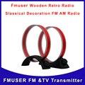 Tecsun AN-100 AN200 AM антенна для повышения прием AN-200 средних волнах AM антенну бесплатная доставка