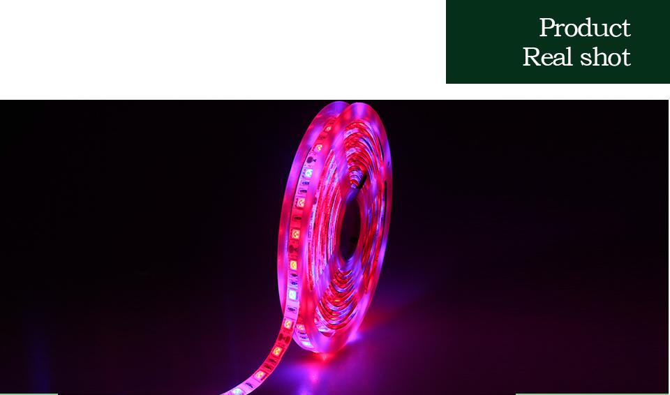 LED Phyto Lamps Strip Light (10)