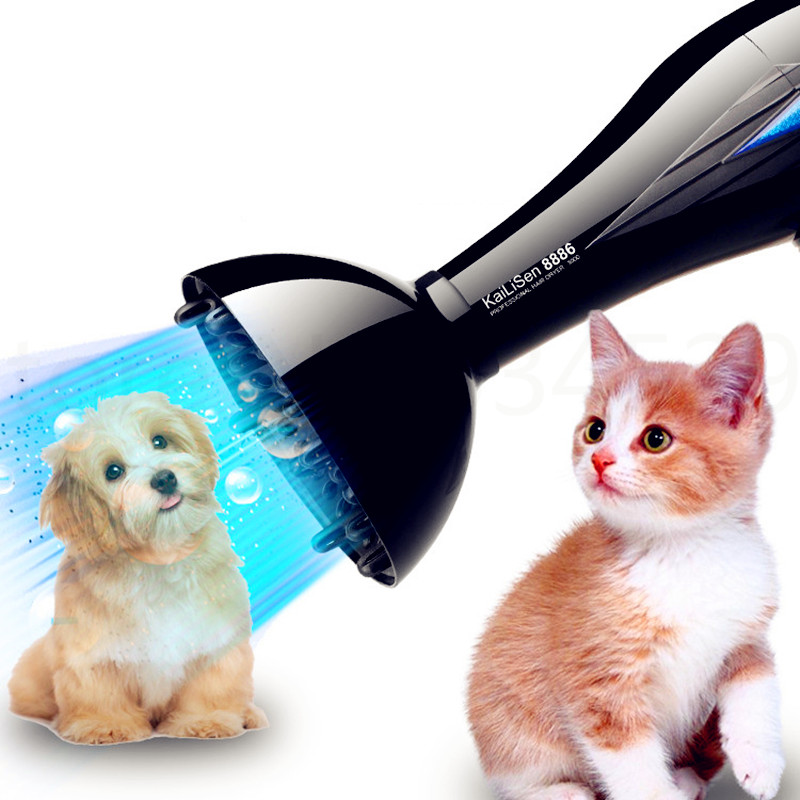 p02 High power pet dryer mute dog hair dryer golden Teddy special drying machine household bath products