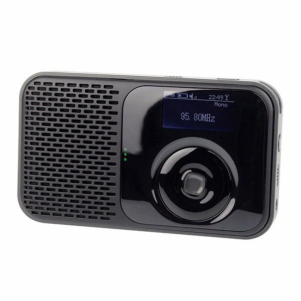Hot Personal Handheld DAB DAB+ Radio FM Stereo (7)