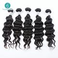 6A Ms Lula Hair Raw Indian Hair One Donor Unprocessed Indian Loose Body Wave bundles cheap human hair Indian Virgin Hair