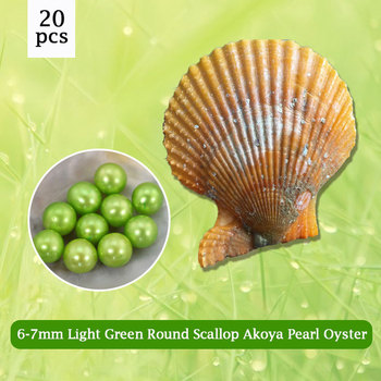 Color Brilliancy Light Green Pearl Scallop Oyster 6-7mm Round Pearl in Oyster,Beautiful DIY Gift 20pcs Free Shipping PJW285