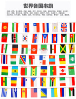 New style 50 pcs Countries String Flag 15 M 20x30cm International World Banner party decoration Customer order