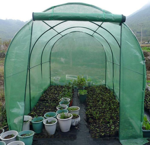 Large Pop Up Clear Greenhouse Cover For Cold Frost Protector Gardening Plants Pot Flower Shelter,indoor grow tent,grow box,-in Garden Greenhouses from ...