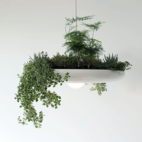 Nordic Pastoral Style Flower Pot Creative Pots Potted Plants Bonsai Suspension Lamp Babylon Light Ryan Taylon